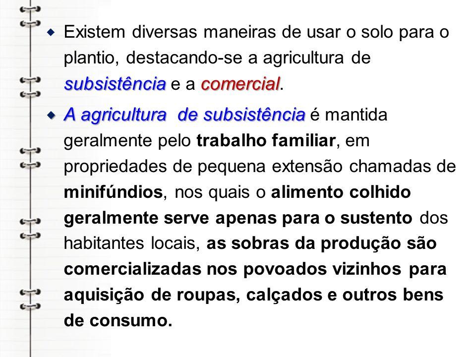 Existem diversas maneiras de usar o solo para o plantio, destacando-se a agricultura de subsistência e a comercial.