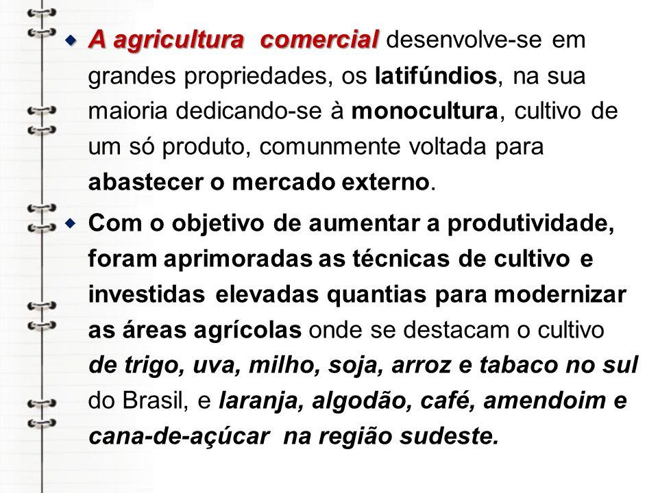 A agricultura comercial desenvolve-se em grandes propriedades, os latifúndios, na sua maioria dedicando-se à monocultura, cultivo de um só produto, comunmente voltada para abastecer o mercado externo.
