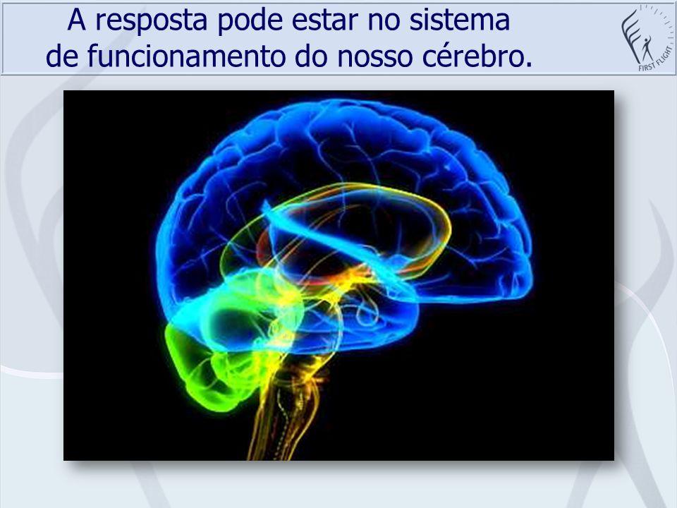 A resposta pode estar no sistema de funcionamento do nosso cérebro.