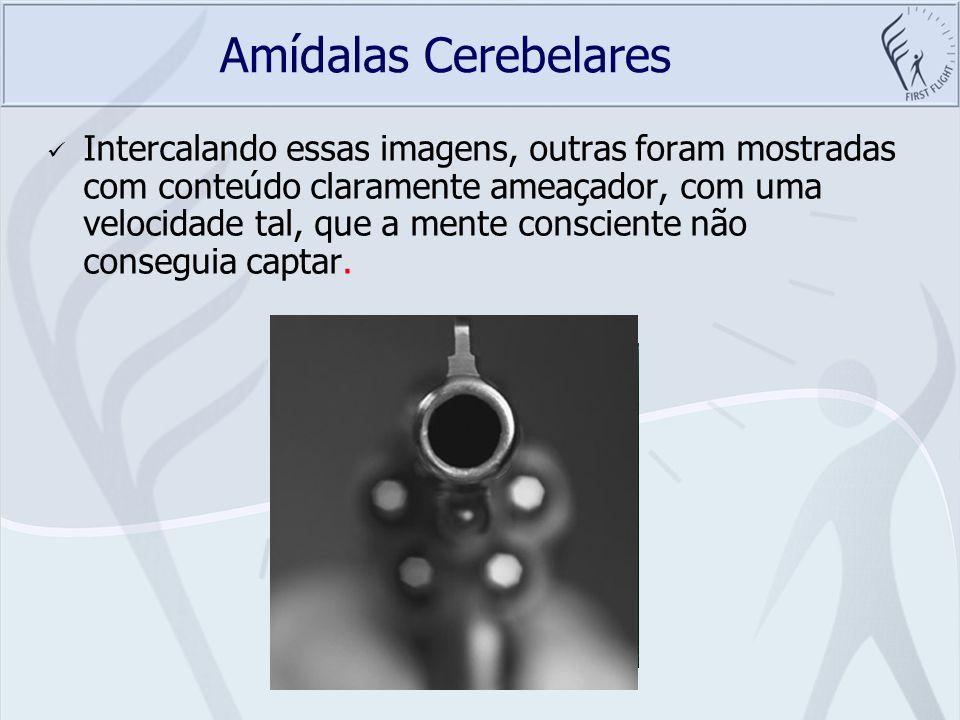 Amídalas Cerebelares
