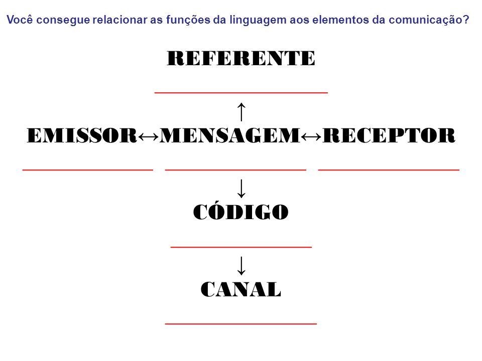 Você consegue relacionar as funções da linguagem aos elementos da comunicação