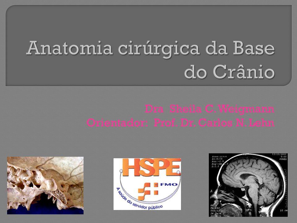 Anatomia cirúrgica da Base do Crânio