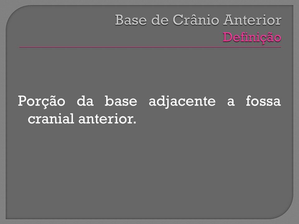 Base de Crânio Anterior Definição