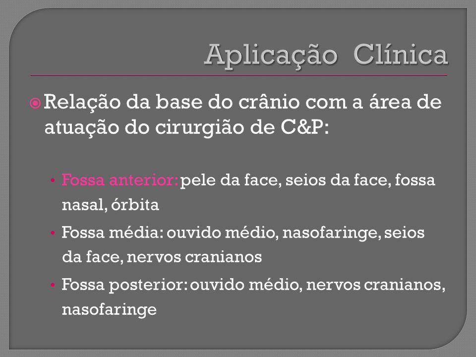 Aplicação Clínica Relação da base do crânio com a área de atuação do cirurgião de C&P:
