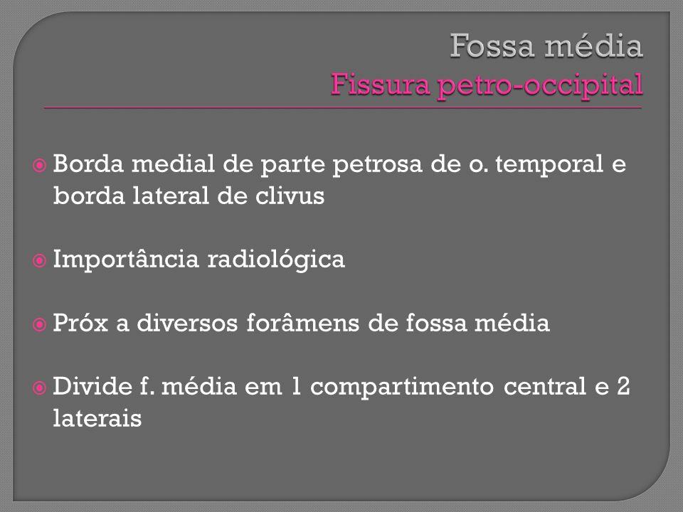 Fossa média Fissura petro-occipital