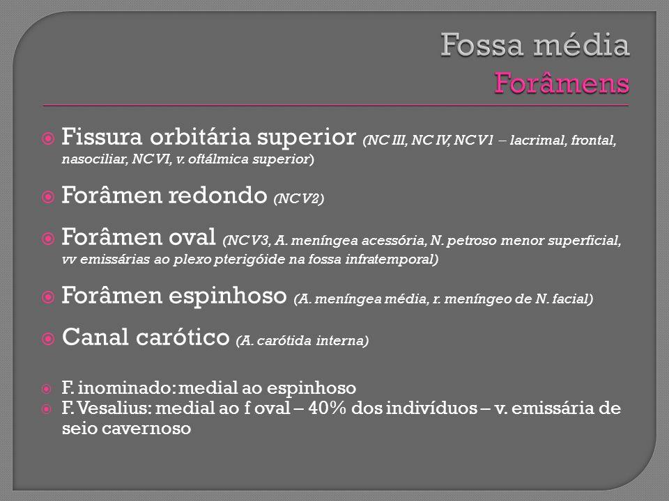 Fossa média Forâmens Fissura orbitária superior (NC III, NC IV, NC V1 – lacrimal, frontal, nasociliar, NC VI, v. oftálmica superior)