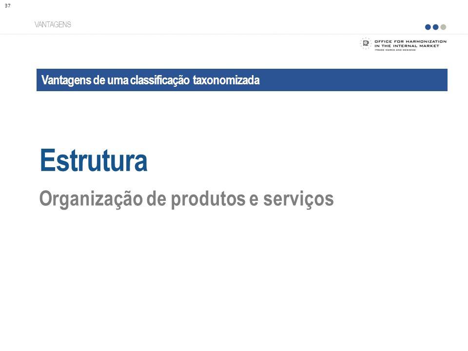 Estrutura Organização de produtos e serviços