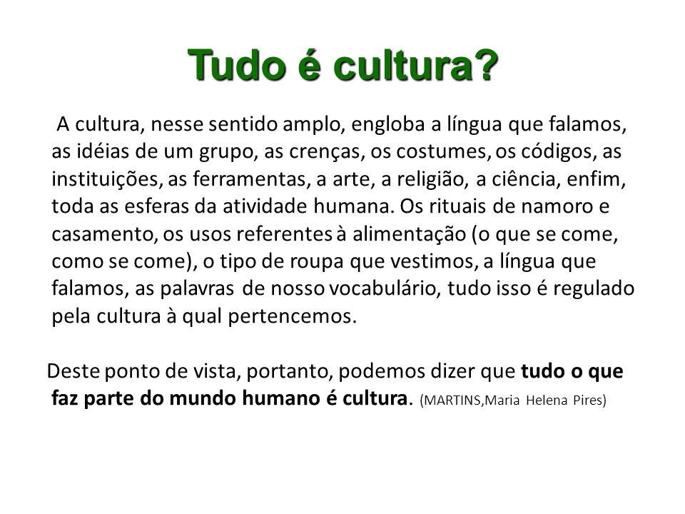 Tudo é cultura