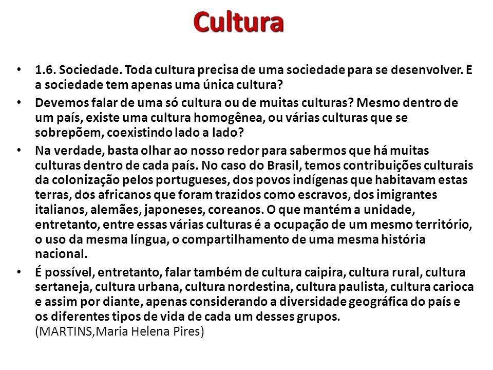 Cultura 1.6. Sociedade. Toda cultura precisa de uma sociedade para se desenvolver. E a sociedade tem apenas uma única cultura