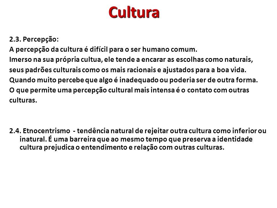 Cultura 2.3. Percepção: A percepção da cultura é difícil para o ser humano comum.
