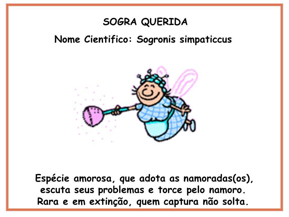 Nome Cientifico: Sogronis simpaticcus