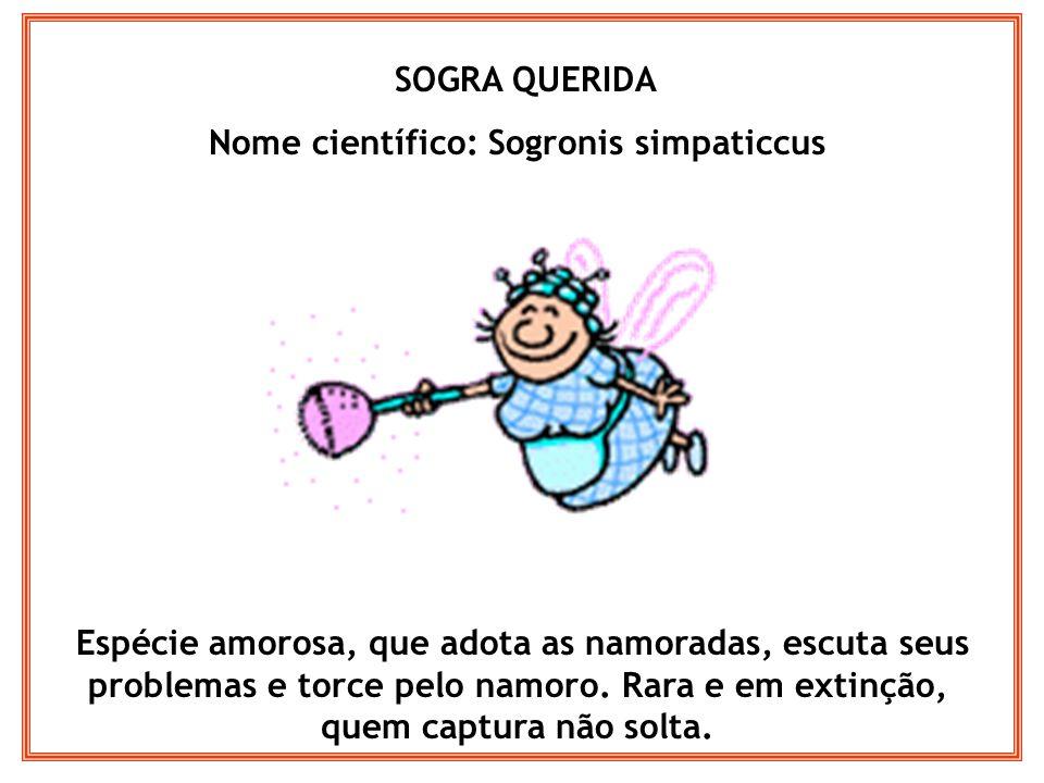 Nome científico: Sogronis simpaticcus