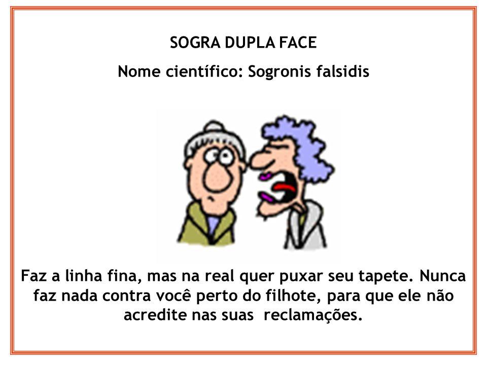 Nome científico: Sogronis falsidis