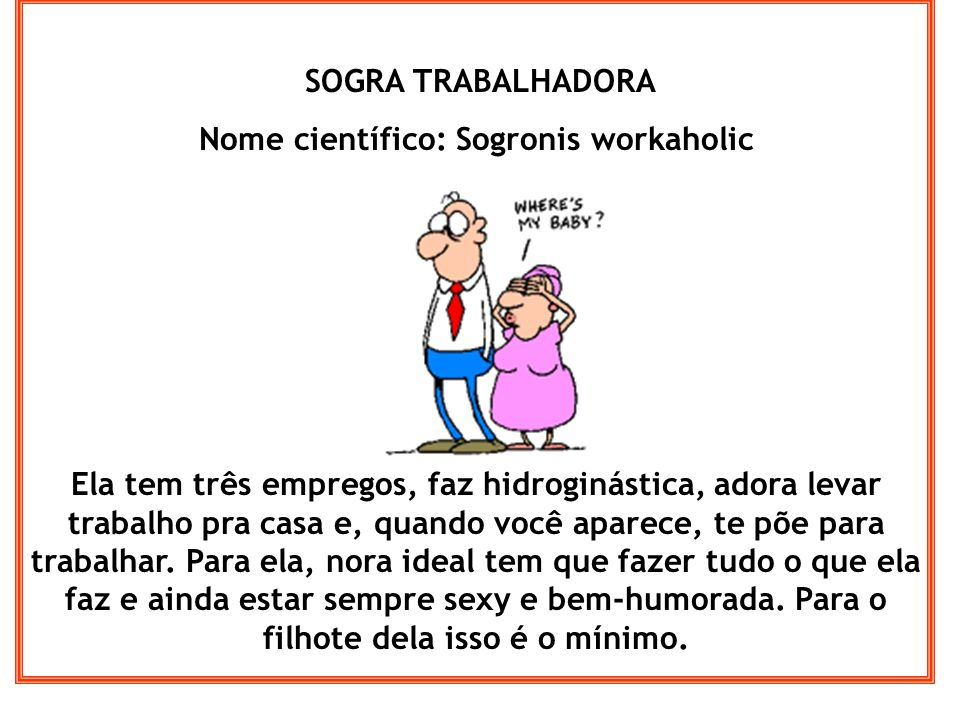 Nome científico: Sogronis workaholic