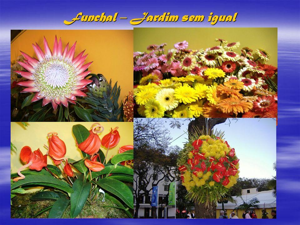 Funchal – Jardim sem igual