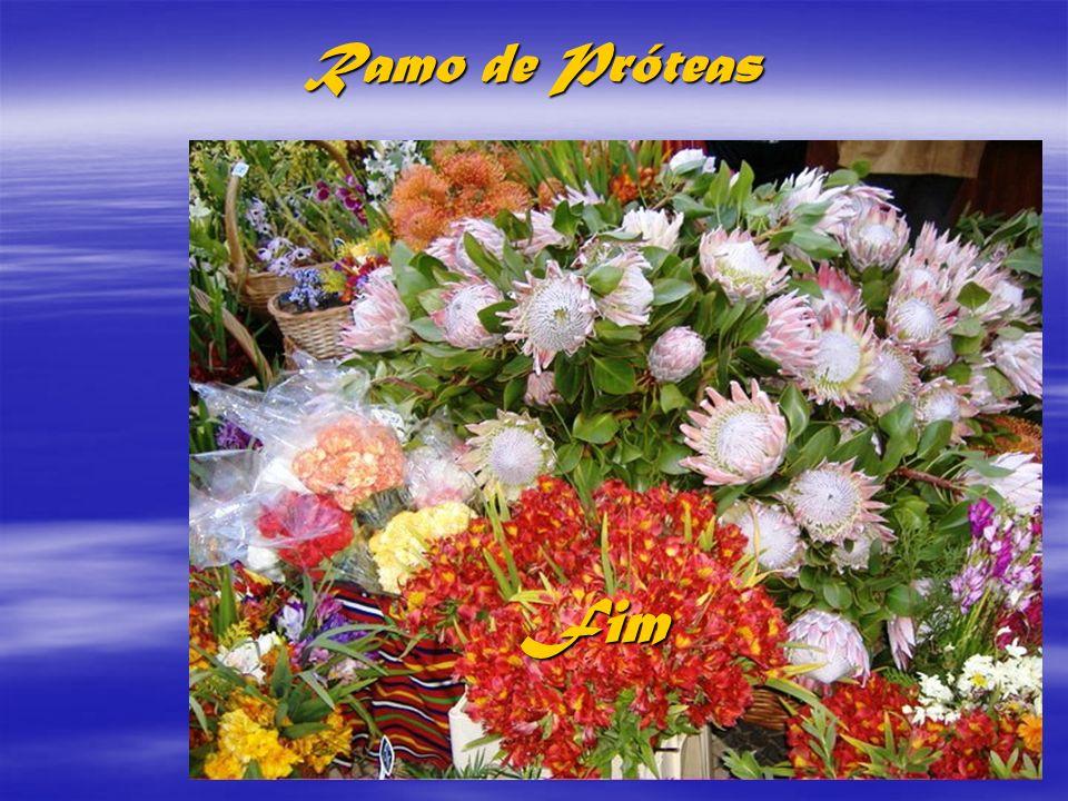 FAIAL Ramo de Próteas Fim f i m