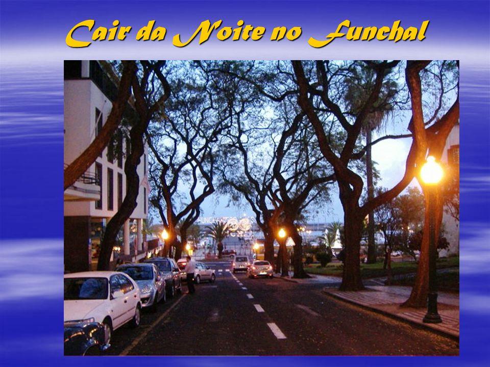 Cair da Noite no Funchal