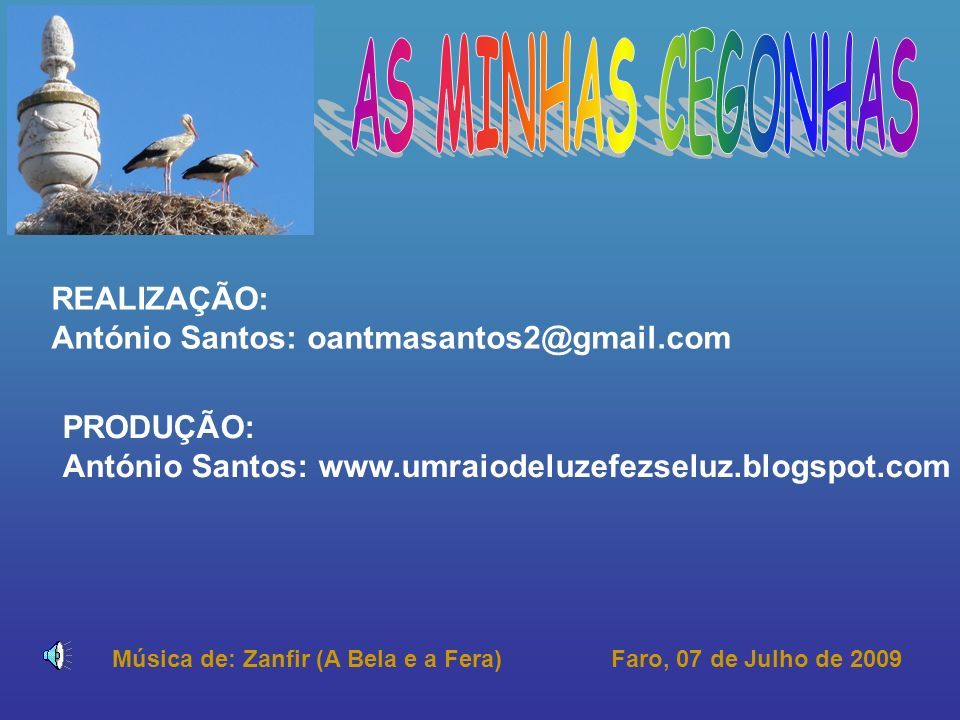 AS MINHAS CEGONHAS REALIZAÇÃO: António Santos: oantmasantos2@gmail.com