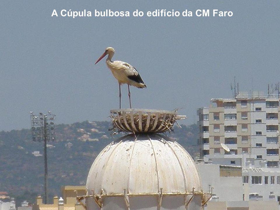 A Cúpula bulbosa do edifício da CM Faro