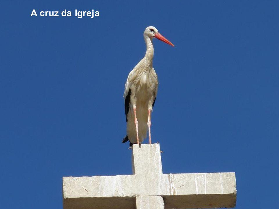 A cruz da Igreja