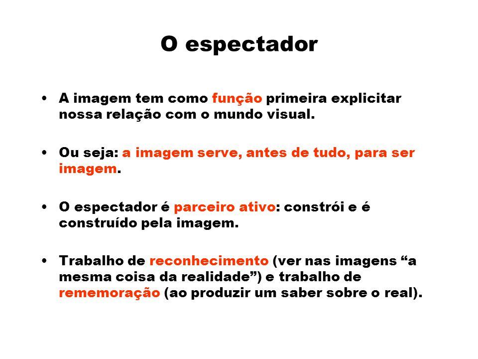 O espectador A imagem tem como função primeira explicitar nossa relação com o mundo visual. Ou seja: a imagem serve, antes de tudo, para ser imagem.