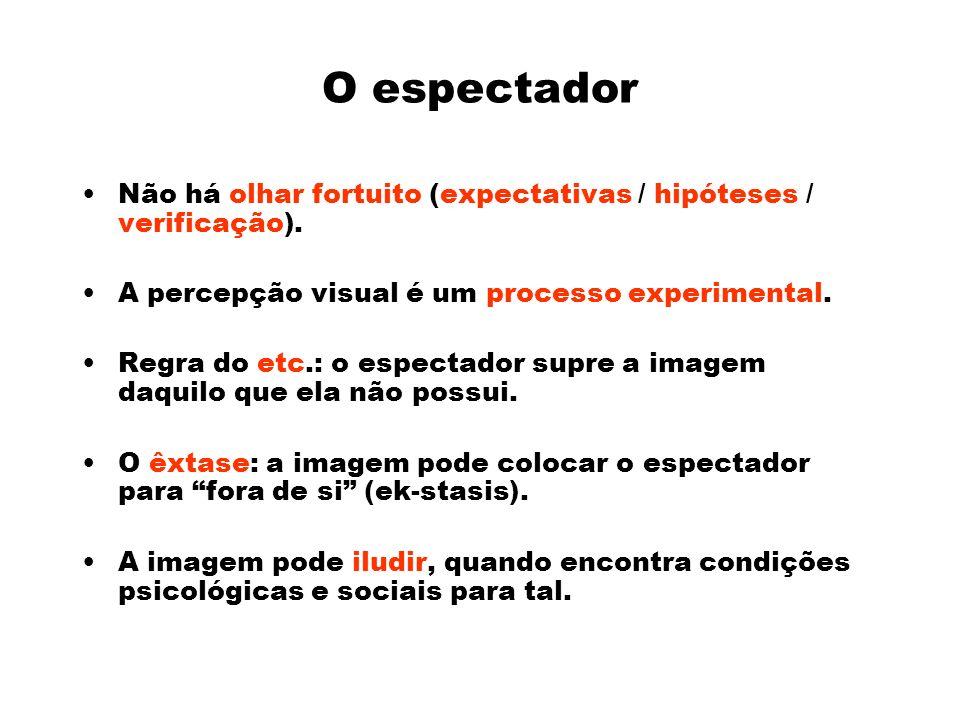 O espectador Não há olhar fortuito (expectativas / hipóteses / verificação). A percepção visual é um processo experimental.
