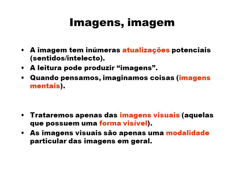 Imagens, imagem A imagem tem inúmeras atualizações potenciais (sentidos/intelecto). A leitura pode produzir imagens .