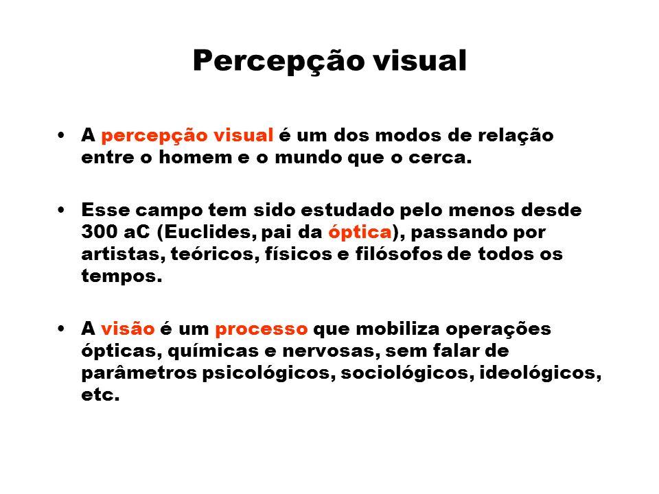 Percepção visual A percepção visual é um dos modos de relação entre o homem e o mundo que o cerca.