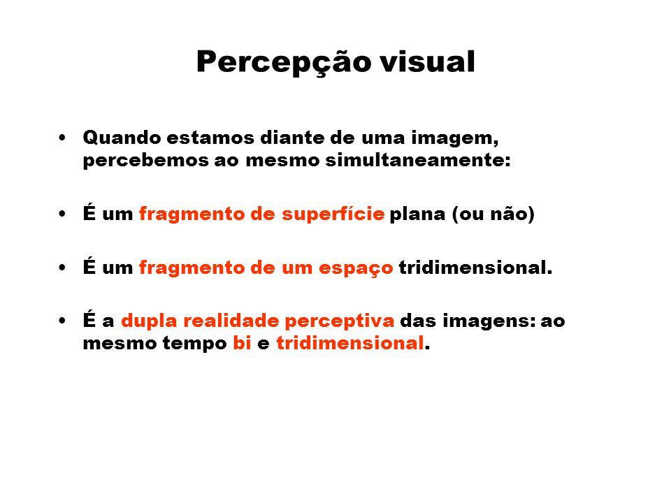 Percepção visual Quando estamos diante de uma imagem, percebemos ao mesmo simultaneamente: É um fragmento de superfície plana (ou não)