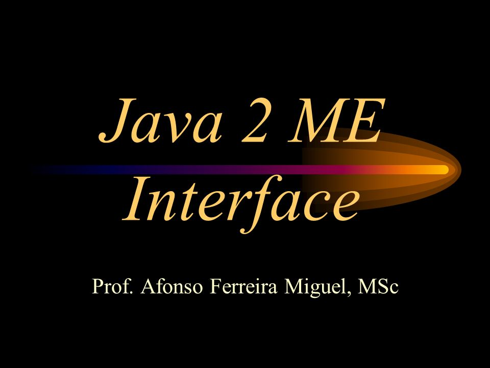 Prof. Afonso Ferreira Miguel, MSc