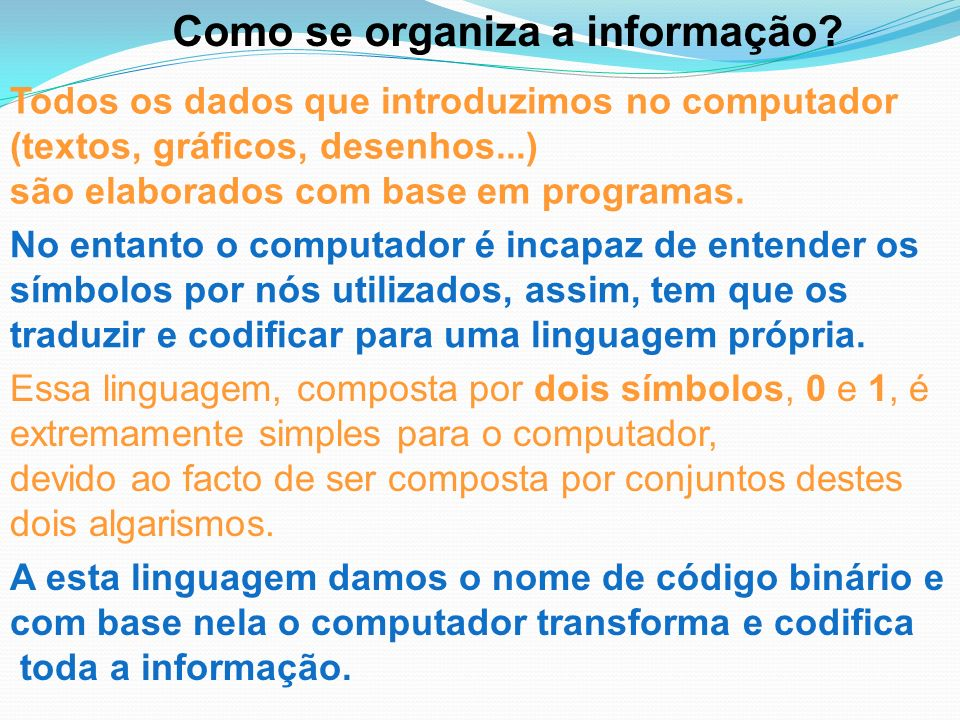 Como se organiza a informação