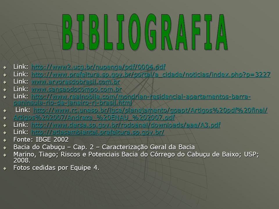 BIBLIOGRAFIA Link: http://www2.ucg.br/nupenge/pdf/0004.pdf