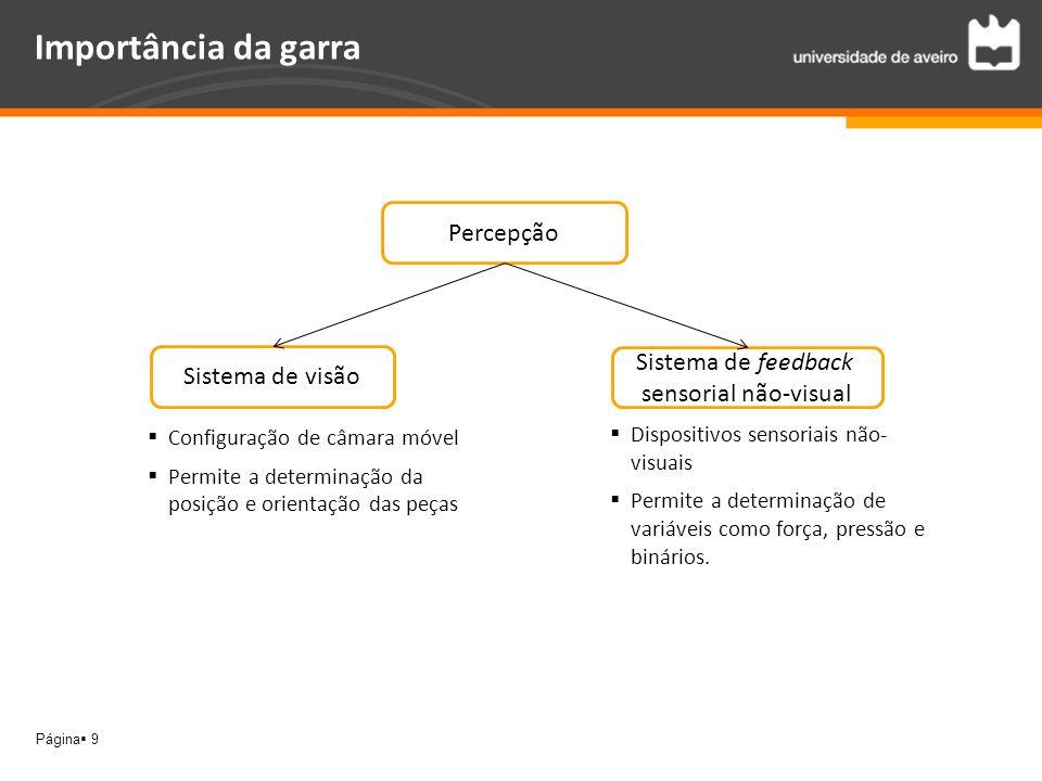 Importância da garra Percepção Sistema de feedback Sistema de visão