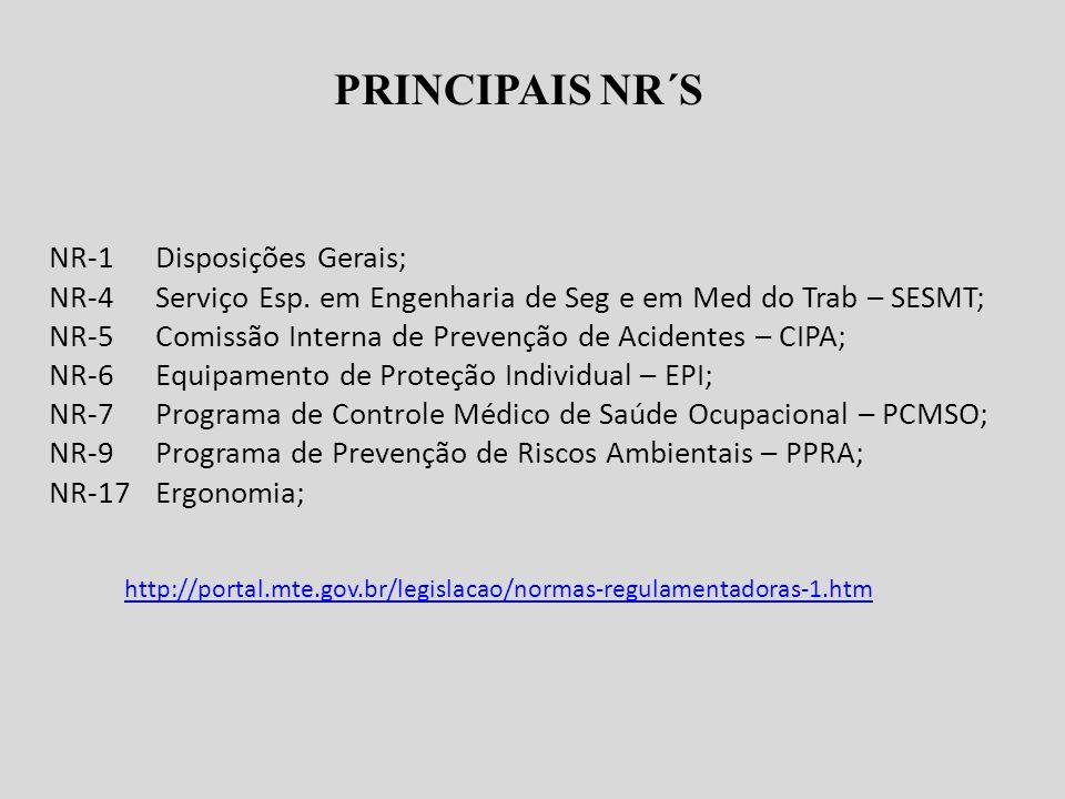 PRINCIPAIS NR´S NR-1 Disposições Gerais;