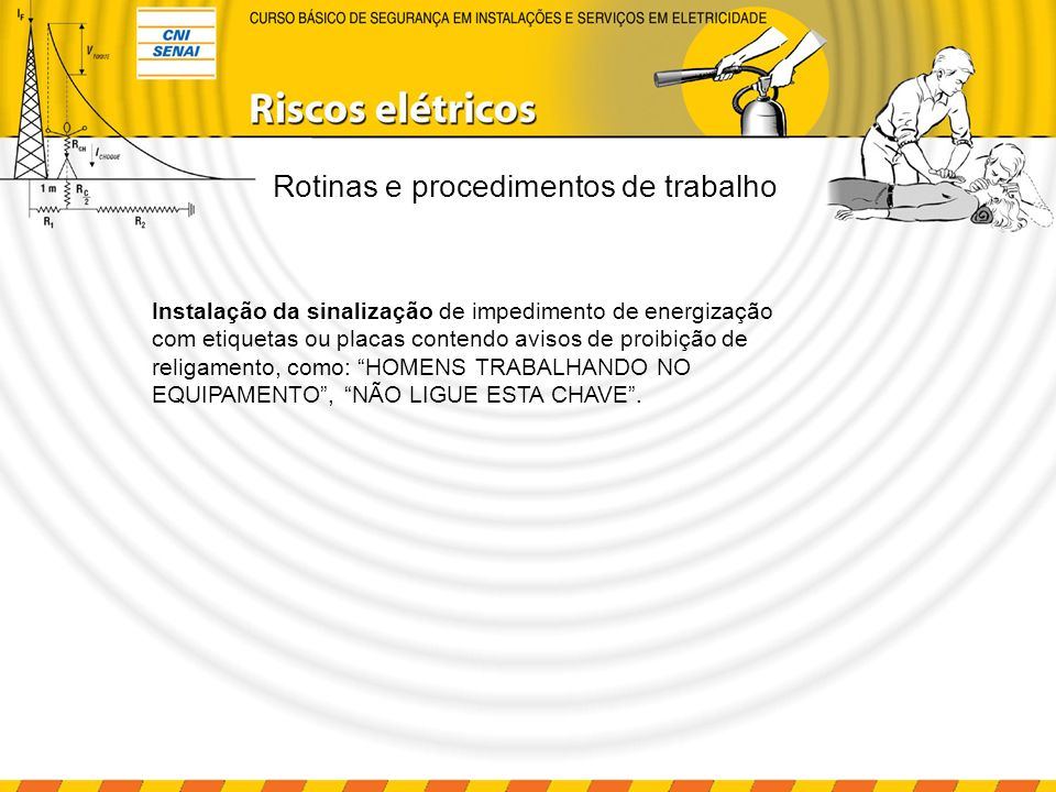 Rotinas e procedimentos de trabalho