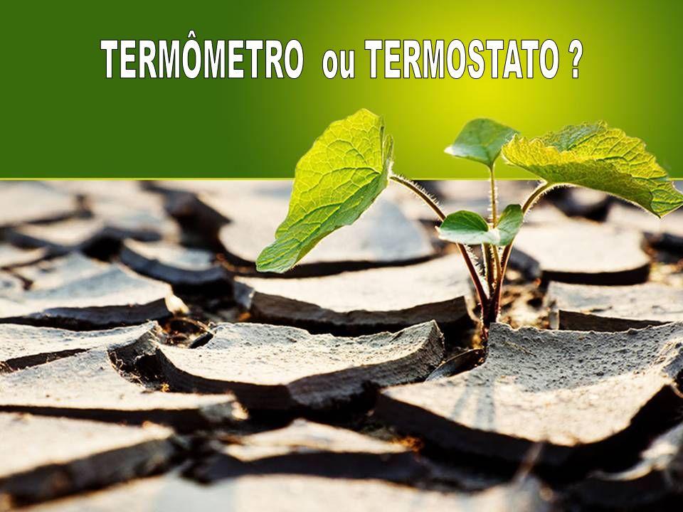 TERMÔMETRO ou TERMOSTATO