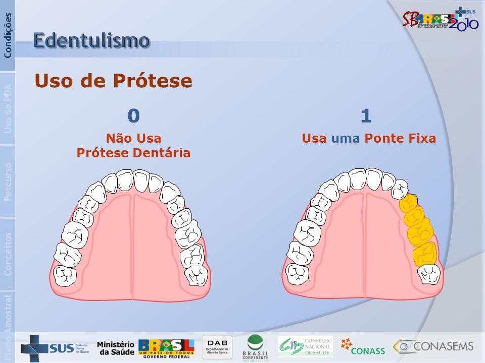 Não Usa Prótese Dentária