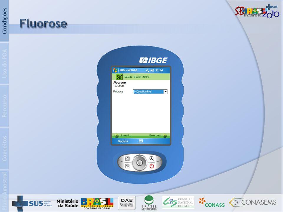 Condições Fluorose Uso do PDA Percurso Conceitos Plano Amostral