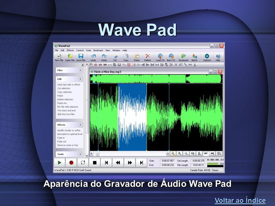Aparência do Gravador de Áudio Wave Pad
