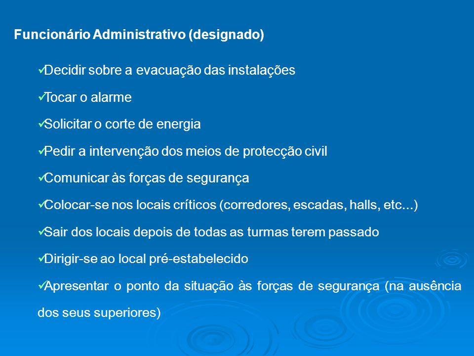 Funcionário Administrativo (designado)