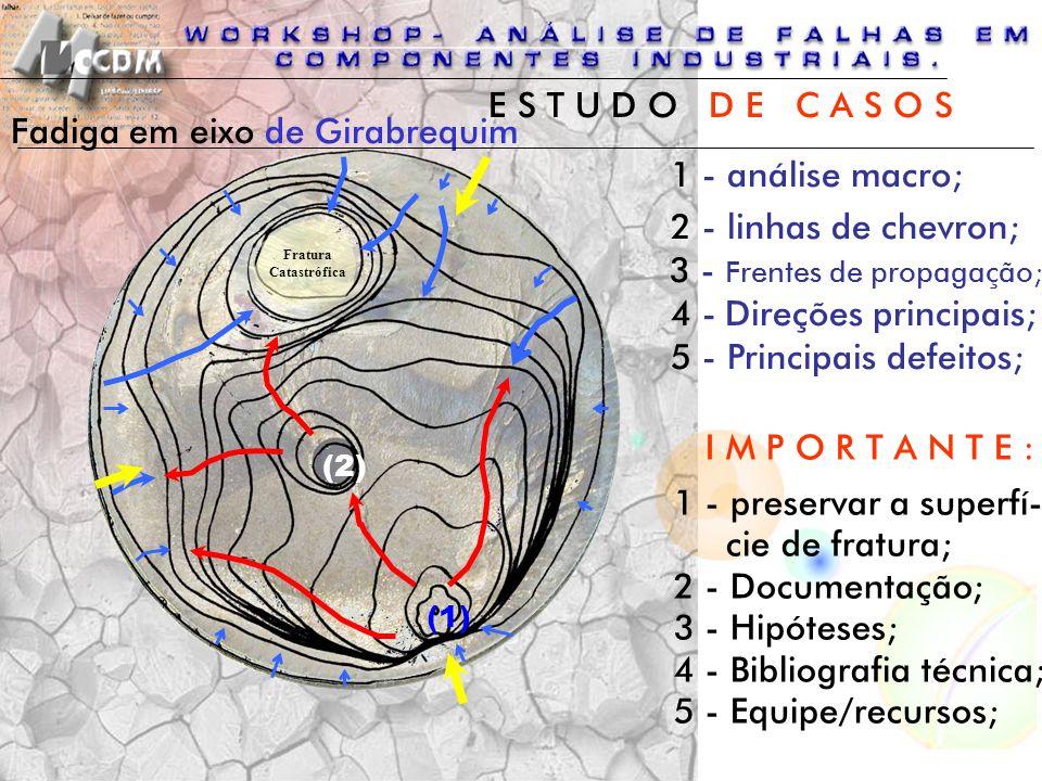 Fadiga em eixo de Girabrequim 1 - análise macro;
