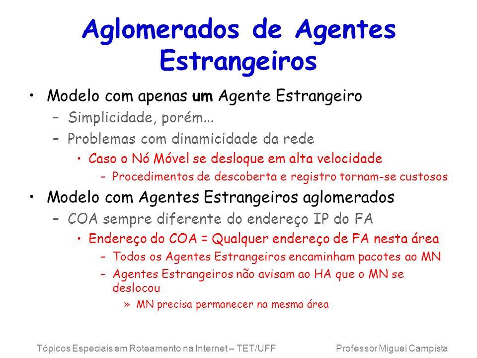 Aglomerados de Agentes Estrangeiros