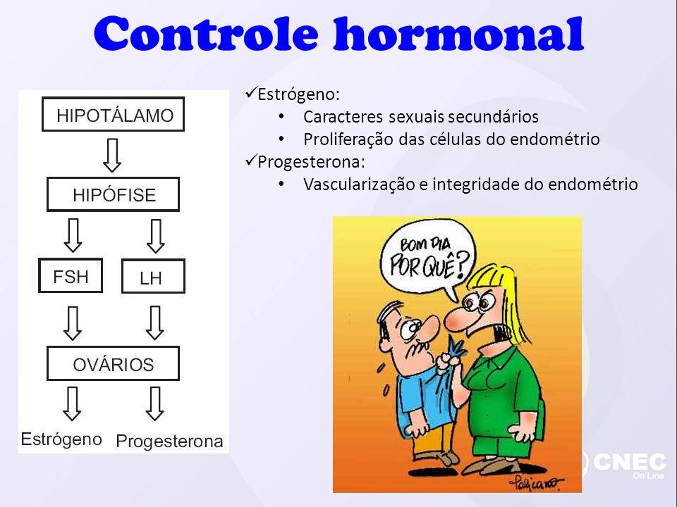 Controle hormonal Estrógeno: Caracteres sexuais secundários