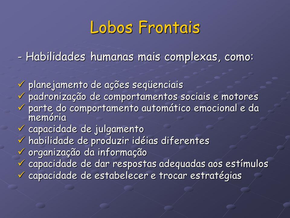 Lobos Frontais - Habilidades humanas mais complexas, como: