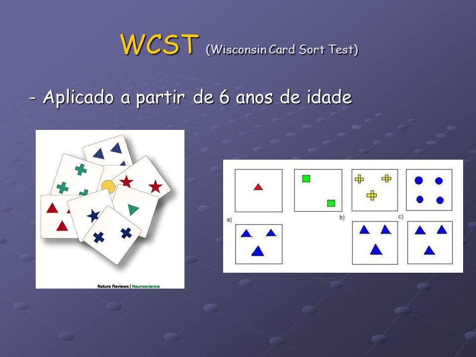 WCST (Wisconsin Card Sort Test)