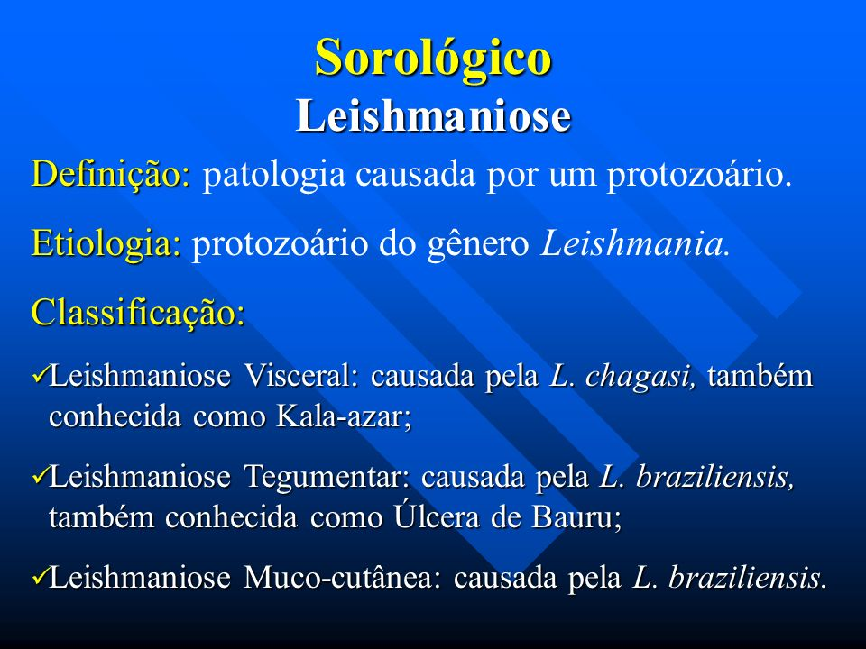Sorológico Leishmaniose