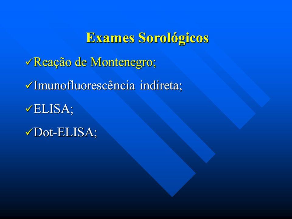 Exames Sorológicos Reação de Montenegro; Imunofluorescência indireta;