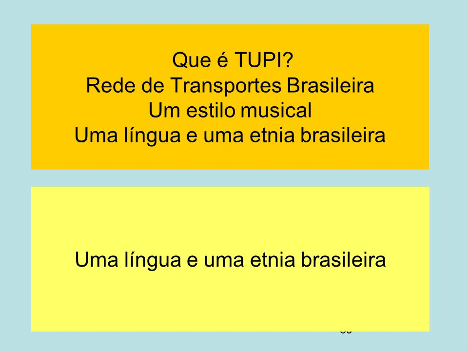 Uma língua e uma etnia brasileira