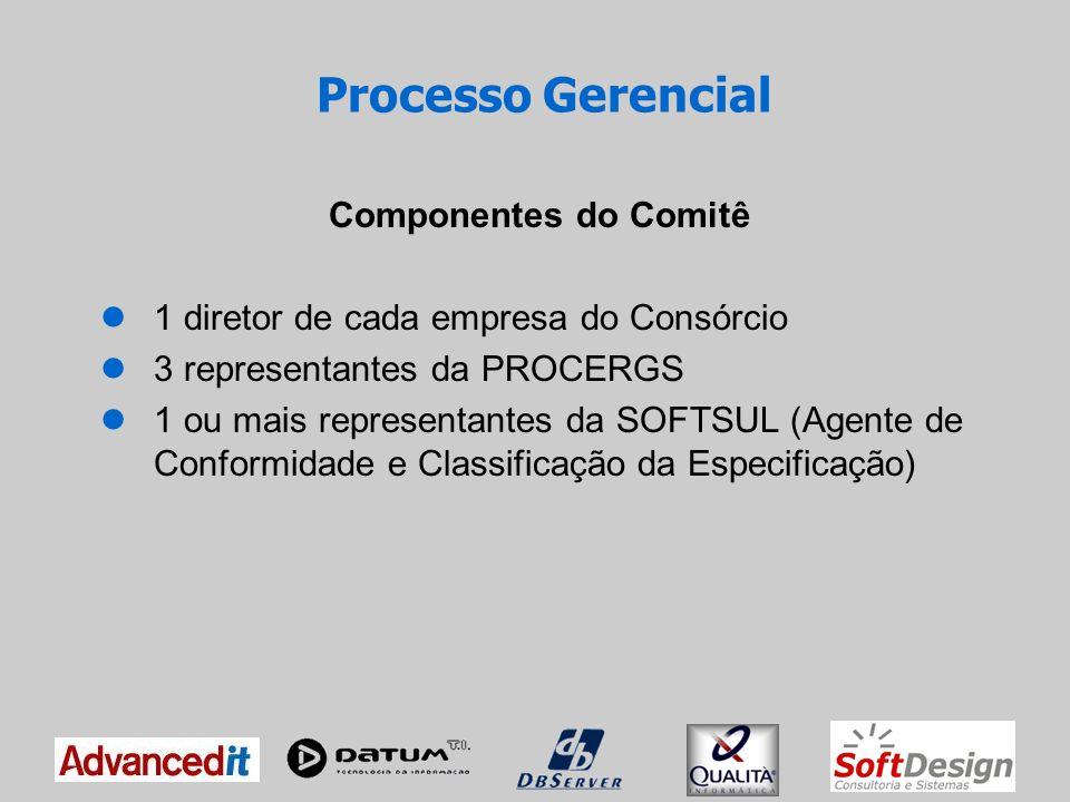 Processo Gerencial Componentes do Comitê