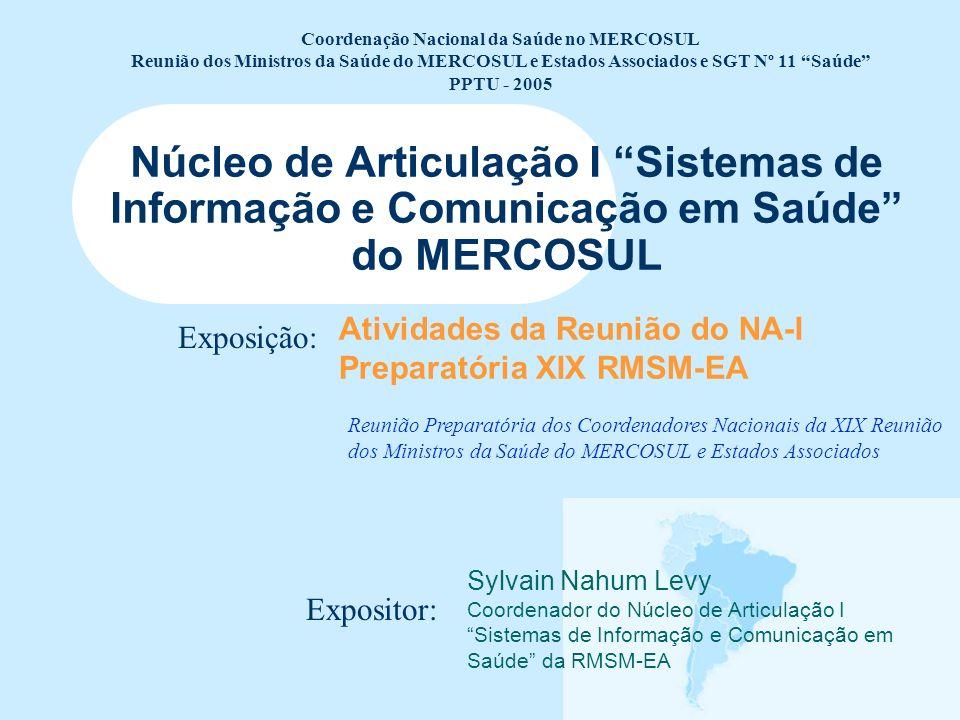 Atividades da Reunião do NA-I Preparatória XIX RMSM-EA